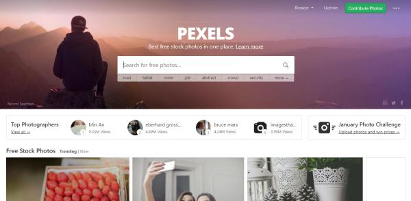 Content creation tool Pexels
